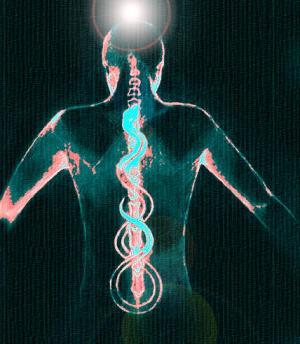 http://yoga.web-3.ru/data/articles/2361/1.jpg